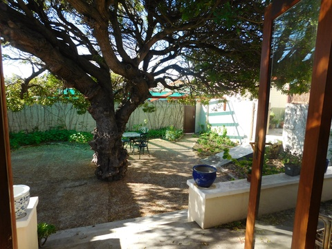 Outside Area at Under The Pepper Tree Fish Hoek